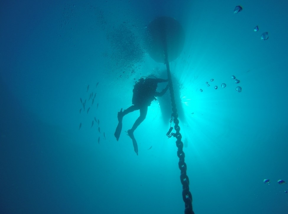 A diver alongside the mooring line